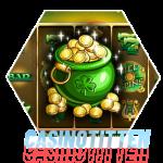9-pots-of-gold-microgaming-casinotitten